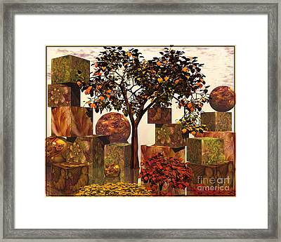 Organic Geometry Framed Print