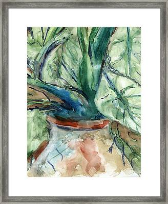 Organic Framed Print by Marilyn Barton