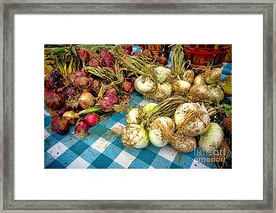 Organic Onions At A Farm Market Framed Print