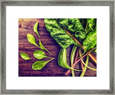 Framed Print featuring the photograph Organic Rainbow Chard by TC Morgan