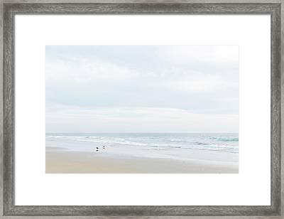 Organic Seascape Natural Beauty 2 Framed Print by Ariane Moshayedi