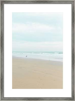 Organic Seascape Natural Beauty Framed Print by Ariane Moshayedi