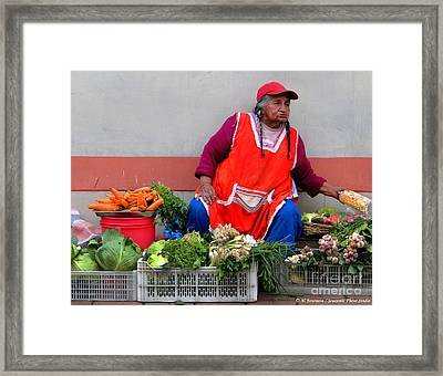 Organic Street Vegetable Sales Framed Print by Al Bourassa
