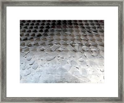 Organic Vs Geometric Framed Print by Donna McLarty