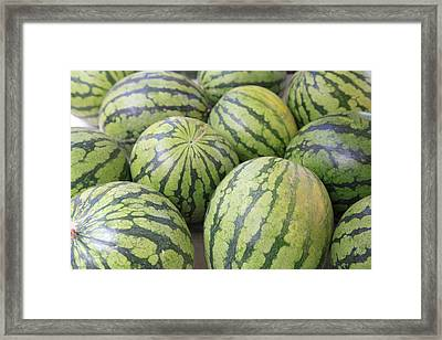 Organic Watermelon Framed Print by Wendy Connett