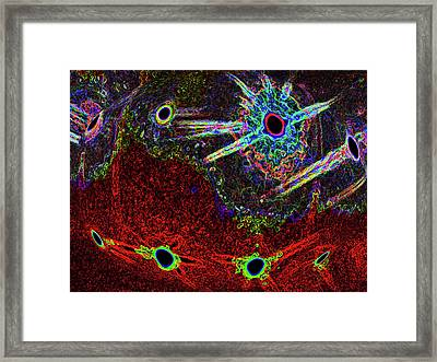 Organized Chaos Framed Print by Bruce Iorio