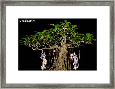 Oriental Bonsai Gods Framed Print