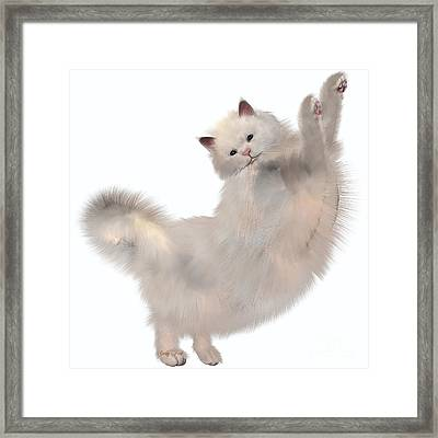 Oriental White Cat Framed Print by Corey Ford