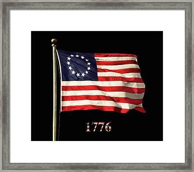 Original American Flag Framed Print
