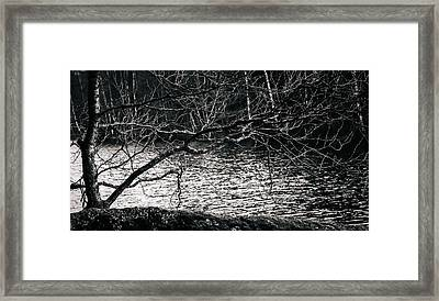 Orlok Framed Print by Matti Ollikainen
