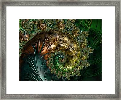 Ornamental Shell Abstract Framed Print