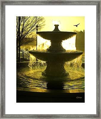 Oro Liquido Framed Print by Kat Besthorn