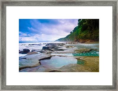 Osa Framed Print