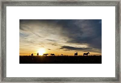 Osage Horses Framed Print