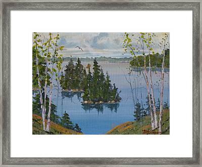 Osprey Island Study Framed Print