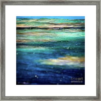 Osprey Reef Framed Print by Doug Sturgess
