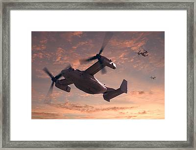 Ospreys In Flight Framed Print