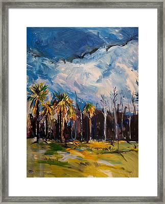 Ossabaw Clouds Framed Print