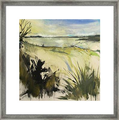 Ossabaw Swamp Thoughts Framed Print