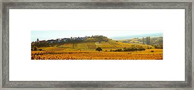 Ostheim Village And Vineyards Framed Print by Panoramic Images
