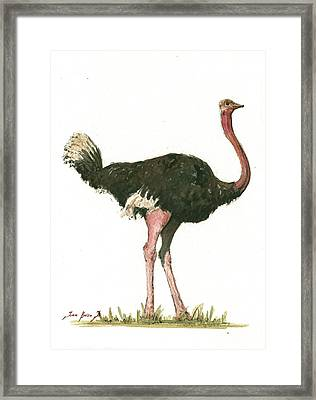 Ostrich Bird Framed Print by Juan Bosco