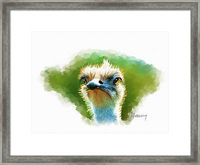 Ostrich Portrait Framed Print by Michael Greenaway