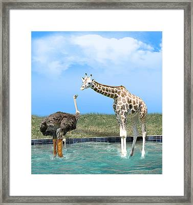 Ostrich With Galoshes Framed Print by Gravityx9  Designs