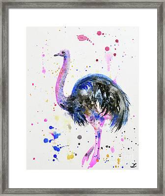 Ostrich Framed Print by Zaira Dzhaubaeva