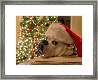 Otis Claus Framed Print by Mike Ronnebeck