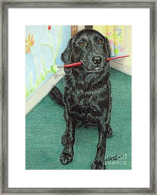 Otis-se Framed Print by Beverly Fuqua