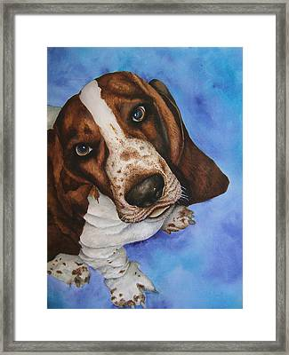 Otis The Basset Hound Framed Print by JoLyn Holladay