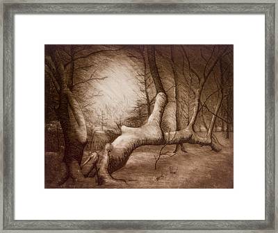 Otsiningo Park Binghamton Ny Framed Print by John Clum