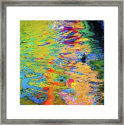 Otter Art  Framed Print