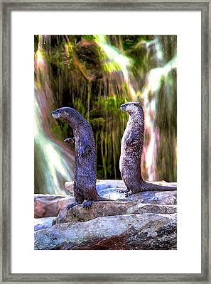 Otter Be On Vacation Framed Print