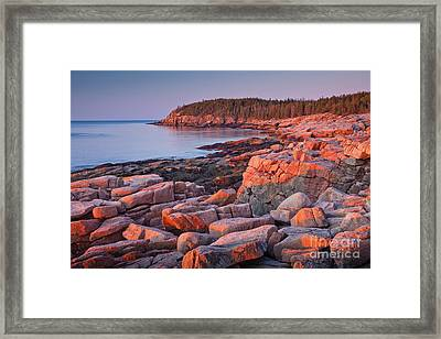 Otter Cliffs  Framed Print by Susan Cole Kelly