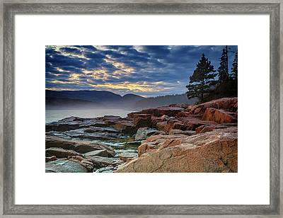 Otter Cove In The Mist Framed Print by Rick Berk