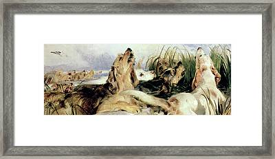 Otter Hounds Framed Print by Sir Edwin Landseer