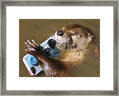Otter Making A Call Framed Print