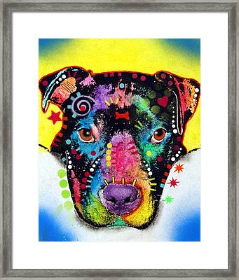 Otter Pitbull Framed Print by Dean Russo