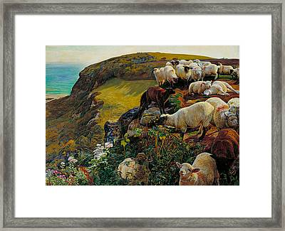 Our English Coasts Or Strayed Sheep Framed Print by William Holman Hunt