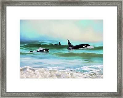 Our Family - Orca Whale Art Framed Print