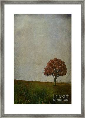 Our Meeting Place Framed Print