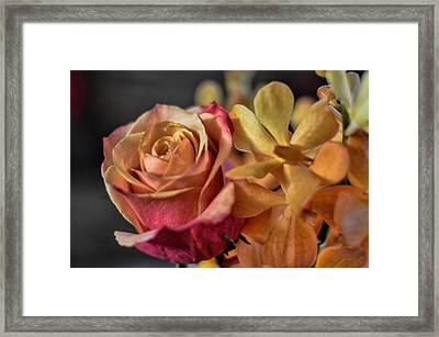 Framed Print featuring the photograph Our Passion by Diana Mary Sharpton