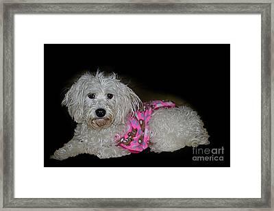 Our Princesa Framed Print