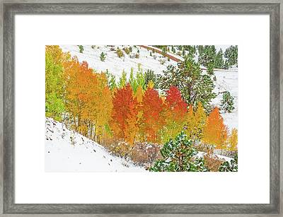 Our Winter Begins Around Mid October.  Framed Print