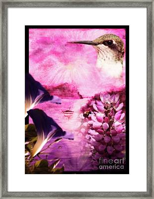 Our World Solitude Sunset Framed Print by Cathy  Beharriell
