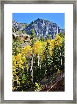 Framed Print featuring the photograph Ouray Aspens by Ray Mathis