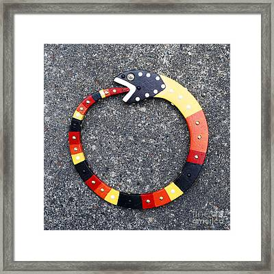 Ouroboros Framed Print by Bill Thomson