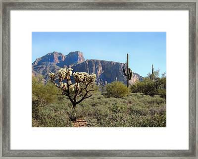Out Arizona Way Framed Print