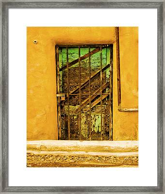 Out Back Framed Print